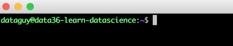 data coding bash commandline