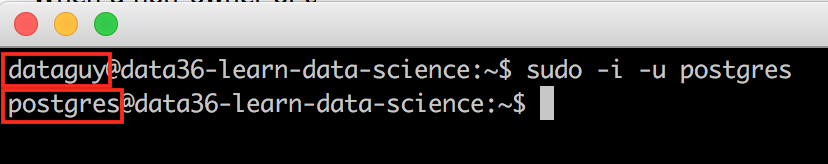 data coding command line prosgres