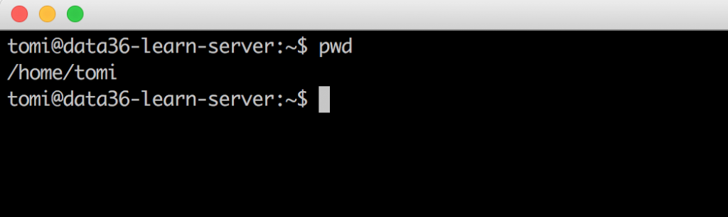 bash command line pwd
