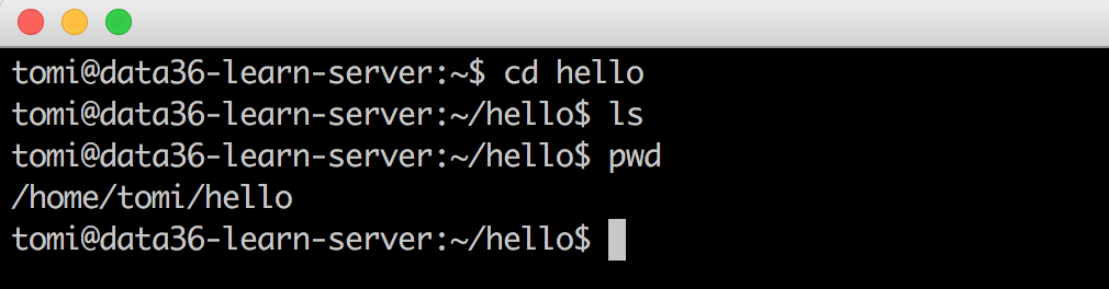 bash command line pwd ls
