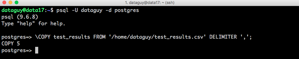 import data postgresql copy command line