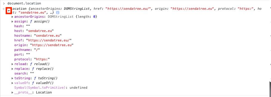 console document location javascript data