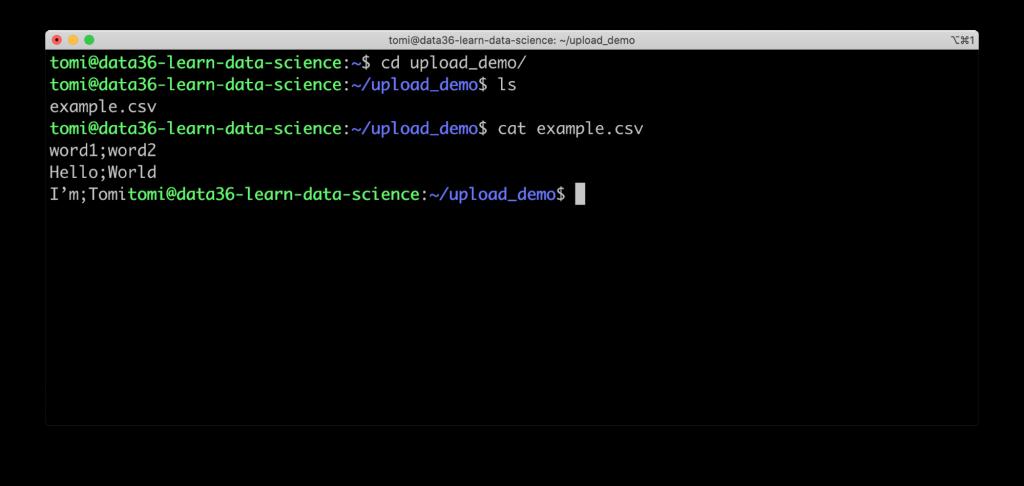 data server file