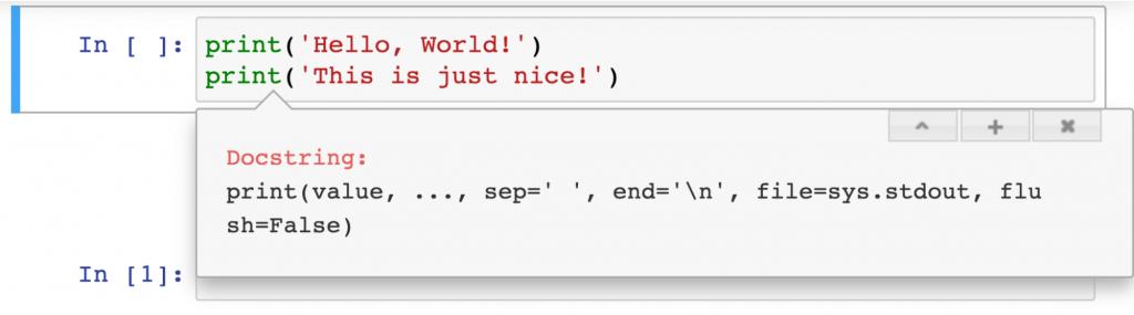 inline documentation in jupyter best practice